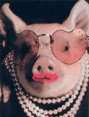 Lipstick_pig