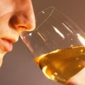 White Wine The Nose