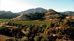 Ch Montelena Vineyards Mt St Helena