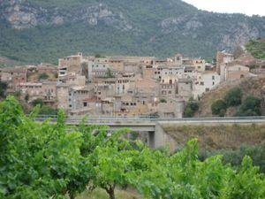 Vilella Baixa Priorat with Lo Givot Vines In Foreground
